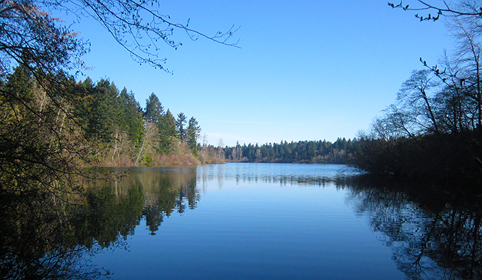 a view of Elk Lake on Vancouver Island near Victoria, British Columbia, Canada - our beautiful home