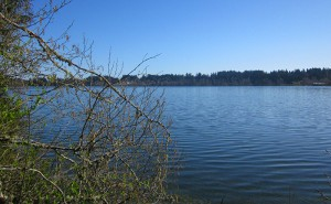 Elk Lake on Vancouver Island near Victoria, British Columbia, Canada - home of Programming & Data Research North